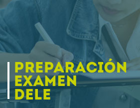 DELE Exam Preparation Course
